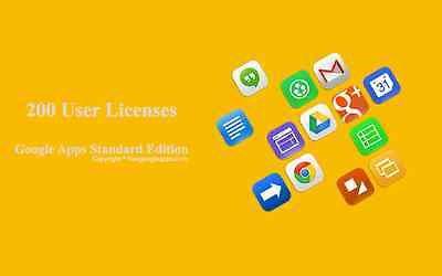 Domain name with 200 users for Google apps Standard Edition