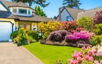 Let Me Help You With Yard Work, Gardening, and Landscaping!