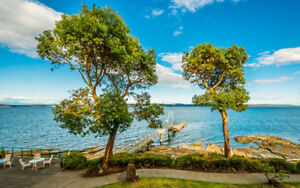 Escape Winter - Waterfront Condos and Townhomes Vancouver Island