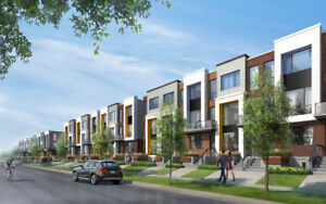 LUXURY FREEHOLD TOWNHOMES  in Toronto - new Release!