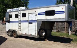 2007 Doyle 3 horse trailer for sale