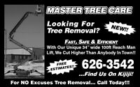 Master Tree Care... Fast, Safe & Efficient Tree Removal w/ equip