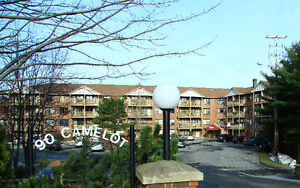 Beautiful 2 bedroom 2 level for Jan 1st Clayton Park