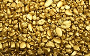 Placer Gold Claim in Omineca / Prince George; JV / Partnership