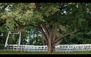 Professional Creative Videography for Couple Session/Engagement London Ontario image 2