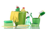 Cleaning Services - weekly / couple of times per week - ASAP