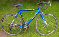 Road bicycle (Medium) - great condition  21 speed