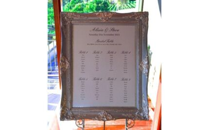 Seating Chart Frame and Easel (available in Silver & Gold)