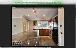 Newly renovated home in Patricia Heights Edmonton Edmonton Area image 11