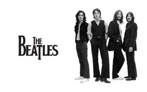 Beatles + music DVDs - films + docs + concerts - all 28 for $5