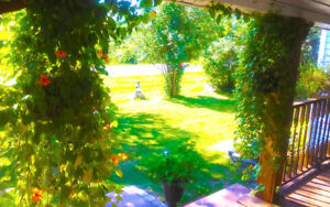 FOR SALE: Beautiful Country Bungalow Home or All-Season Cottage Cornwall Ontario image 5