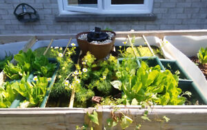 Safe and proven, complete aquaponics modular system