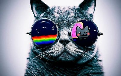 Cool Macro Nyan Cat Glasses Fabric Art Cloth Poster 21inch x 13inch Decor 2