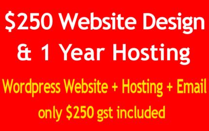 $250 Website Design and Hosting!