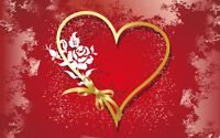 Valentine's Day Gala to support local nonprofit