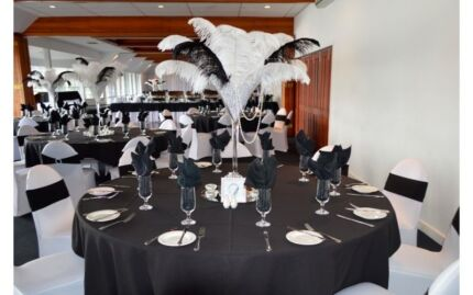 Centrepieces - Ostrich Feathers in Martini Vases