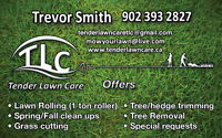 YARD CLEAN UPS-TREE REMOVAL-LAWN CARE