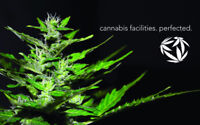 Join a growing company in the Cannabis Industry!