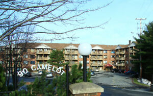 Beautiful Large Renovated 1 bed + den 2 level Clayton Park Oct 1