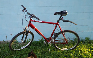 Norco Pinnalce Mountain Bike *REDUCED PRICE