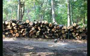 Mixed hardwood. Sold by the tandem truck load