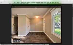 Newly renovated home in Patricia Heights Edmonton Edmonton Area image 17