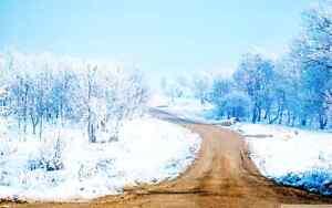 """Snow Removal?? """"EDGE TO EDGE""""  Always an EDGE above the rest! Edmonton Edmonton Area image 2"""