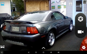 2004  GT Mustang  083073 km   st andree nb e3y 3b1