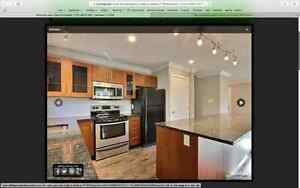 Newly renovated home in Patricia Heights Edmonton Edmonton Area image 10