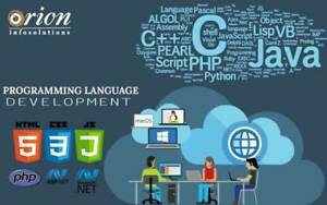 Multi Featured and Customised WordPress Solutions For Business
