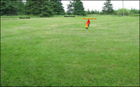 Oceanfront Lot, Kitson Road, Red Point, PEI (REDUCED)