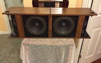 Vintage Bose Bookshelf Speakers	301