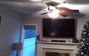 Big Size Ceiling Fans - like brand new