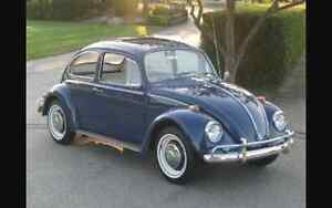 ***WANTING TO BUY A VINTAGE VW BEETLE***