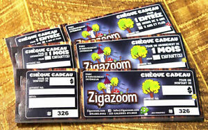 Passe annuelle pour ZigaZoom Yearly Pass - Aylmer Fun Centre Gatineau Ottawa / Gatineau Area image 1