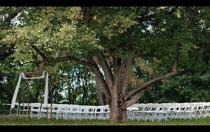Creative Wedding Videographer for HIRE Belleville Belleville Area image 1