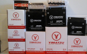 Brand New Atv Batteries