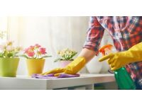 Cleaning and Ironing Services