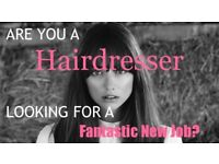 Wanted hairdresser, barber or stylist