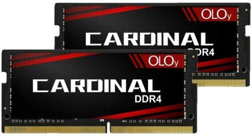 OLOy DDR4 Laptop SODIMM RAM 64GB (2x32GB) 3200 MHz CL22  (MD4S3232220IZ0DC)
