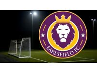 Looking for a Goalkeeper - Football Team in South London Clapham Area Playing Saturdays