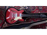 Haagstrom viking IIP cream red, with hard case and strap