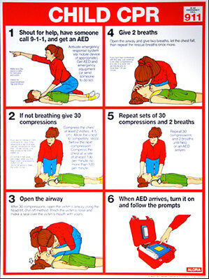 Child CPR FIRST AID Instructional Wall Chart Poster (ARC-AHA Guidelines)