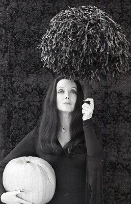 Original Addams Family Halloween (CAROLYN JONES PUMPKIN ADDAMS FAMILY HALLOWEEN RARE 1977 NBC TV PHOTO)