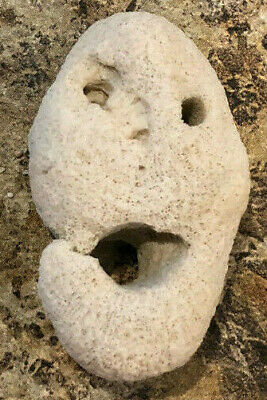 Double Face Halloween (CREEPY HALLOWEEN rock double sided face, found in bahamas princess cay)