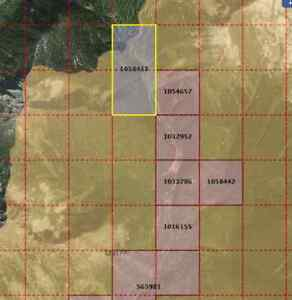 BC PLACER GOLD CLAIM ON WILDHORSE RIVER FOR SALE
