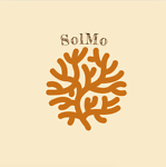 solmo-2020