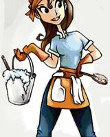 Experienced  House Cleaner Required