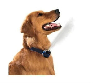 NO BARK COLLAR CITRONELLA SPRAY no shock anti bark stop dog barking + Warranty