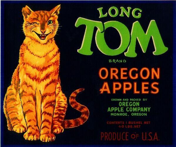 Monroe Oregon Long Tom Cat Kitten Cats Apples Apple Fruit Crate Label Art Print